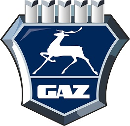 GAZ international LCC